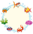 sea creature frame template vector image vector image