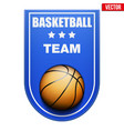 basketball badge and label vector image vector image