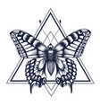 butterfly in triangle tattoo dotwork tattoo vector image