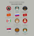 dogs by country of origin balkans dog breeds vector image