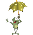 green frog Cartoon vector image vector image