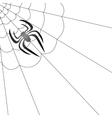 Poisonous Spider and Her Cobweb vector image