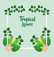 tropical leaves frame decorative flowers exotic vector image vector image
