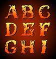 Vintage alphabet set on background vector image vector image