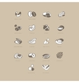 Nuts Icon Set vector image