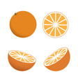 orange whole and slices of oranges vector image vector image
