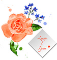 rose and forget-me-flower for celebratory design vector image