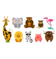 set of cute cute animals giraffe lion elephant vector image