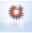 soft flower vector image vector image