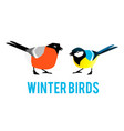 winter birds are tit and bullfinch vector image