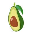 avocado icon isometric 3d style vector image