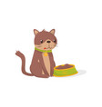 brown cat sitting next to bowl full of food vector image vector image