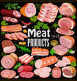 set meat products with spices and aromatic vector image