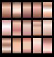 set of rose gradients vector image