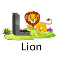 zoo animal alphabet l for lion vector image