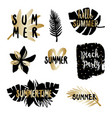 black and gold summer design elements vector image vector image