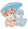 enamored bunnies with umbrella 2 vector image