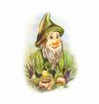 funny figurine of garden dnome watercolor cute vector image vector image