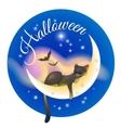 Halloween sleeping cat vector image