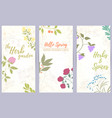 herb hand drawn card vector image vector image