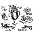 ink hand drawn style mulled wine set vector image vector image
