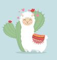 llama alpaca fluffy with cactus plant vector image vector image