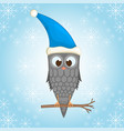 owl on the branch in the santa claus hat postcard vector image vector image