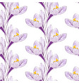 seamless pattern with saffron vector image vector image