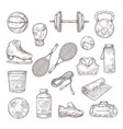 sketch sports equipment ball dumbbell and tennis vector image