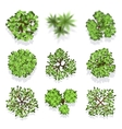 Trees top view set for landscape design and vector image