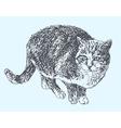 digital sketch drawing of cat vector image