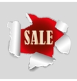 Red background sale tag with exploding hole and vector image
