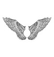 angel wing in vintage style template for tattoo vector image vector image
