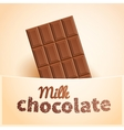 Bar of milk chocolate vector image vector image