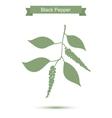 Black pepper branch Green silhouette of pepper vector image