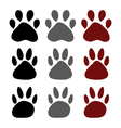 dog paws vector image