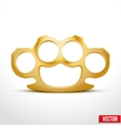Gold Metal Brass knuckles vector image vector image