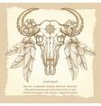 Hand drawn buffalo skull vintage poster vector image vector image