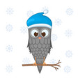 owl on the branch in the santa claus hat postcard vector image
