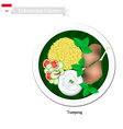 Tumpeng or Indonesian Yellow Rice vector image vector image