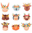 collection colored cartoon animals flat vector image vector image