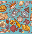 ocean cockleshell and seashell seamless pattern vector image vector image
