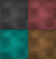 Set of leather patterns vector image