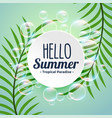 summer tropical background with leaves and bubbles vector image vector image