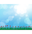 Tulip grass meadow background