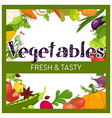 vegetables frame market or grocery store harvest vector image vector image