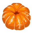 cartoon peeled mandarin isolated on a white vector image