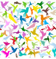 colibri collection sketch for your design vector image vector image