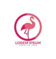 flamingo logo design vector image vector image