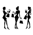 Girls and women with shopping bags vector image vector image